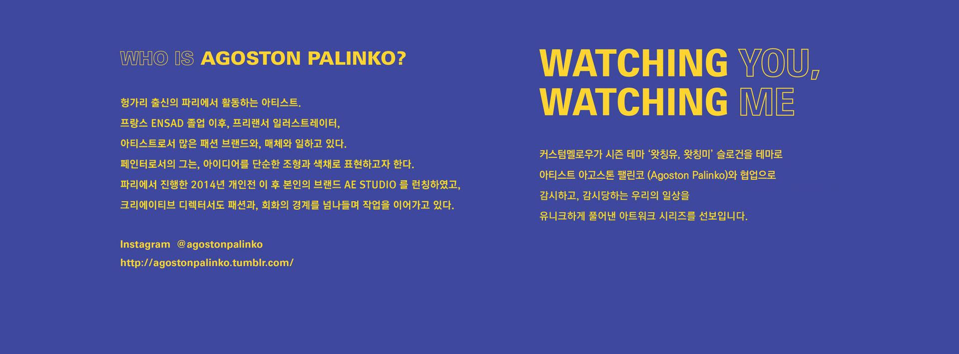 WHO IS AGOSTON PALINKO?